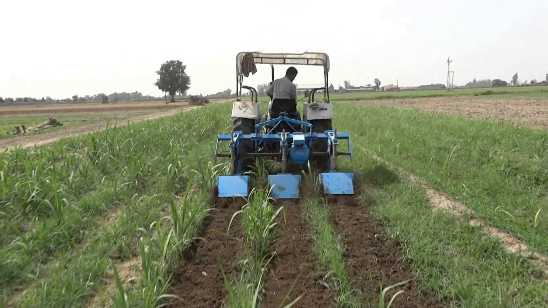 Inter Row Rotary Cultivator - YouTube