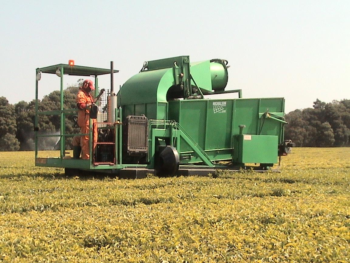 Tea Harvester | Tea Harvesting Equipment