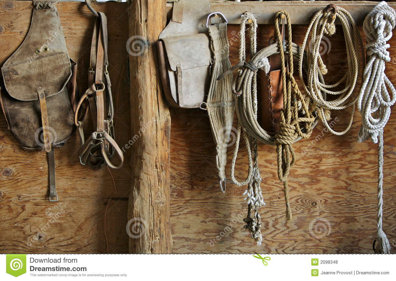 Horse Equipment Royalty Free Stock Photos - Image: 2098348