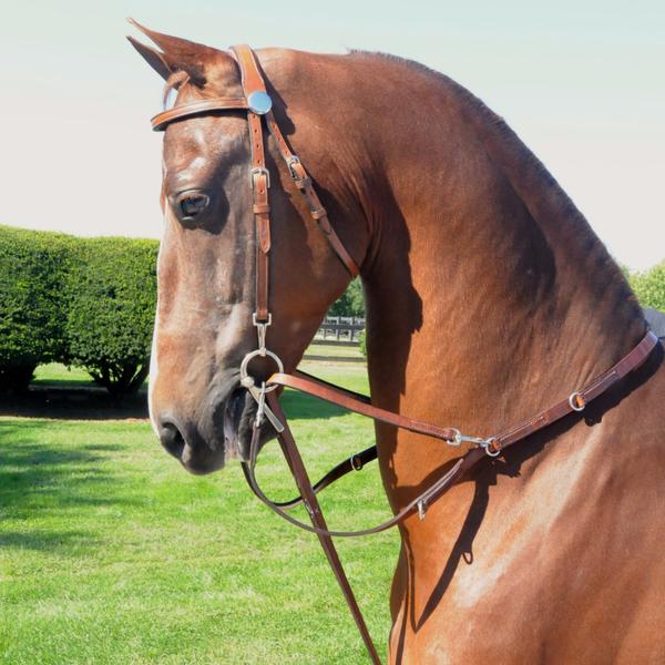 German Martingale | Shop Online – Freedman's