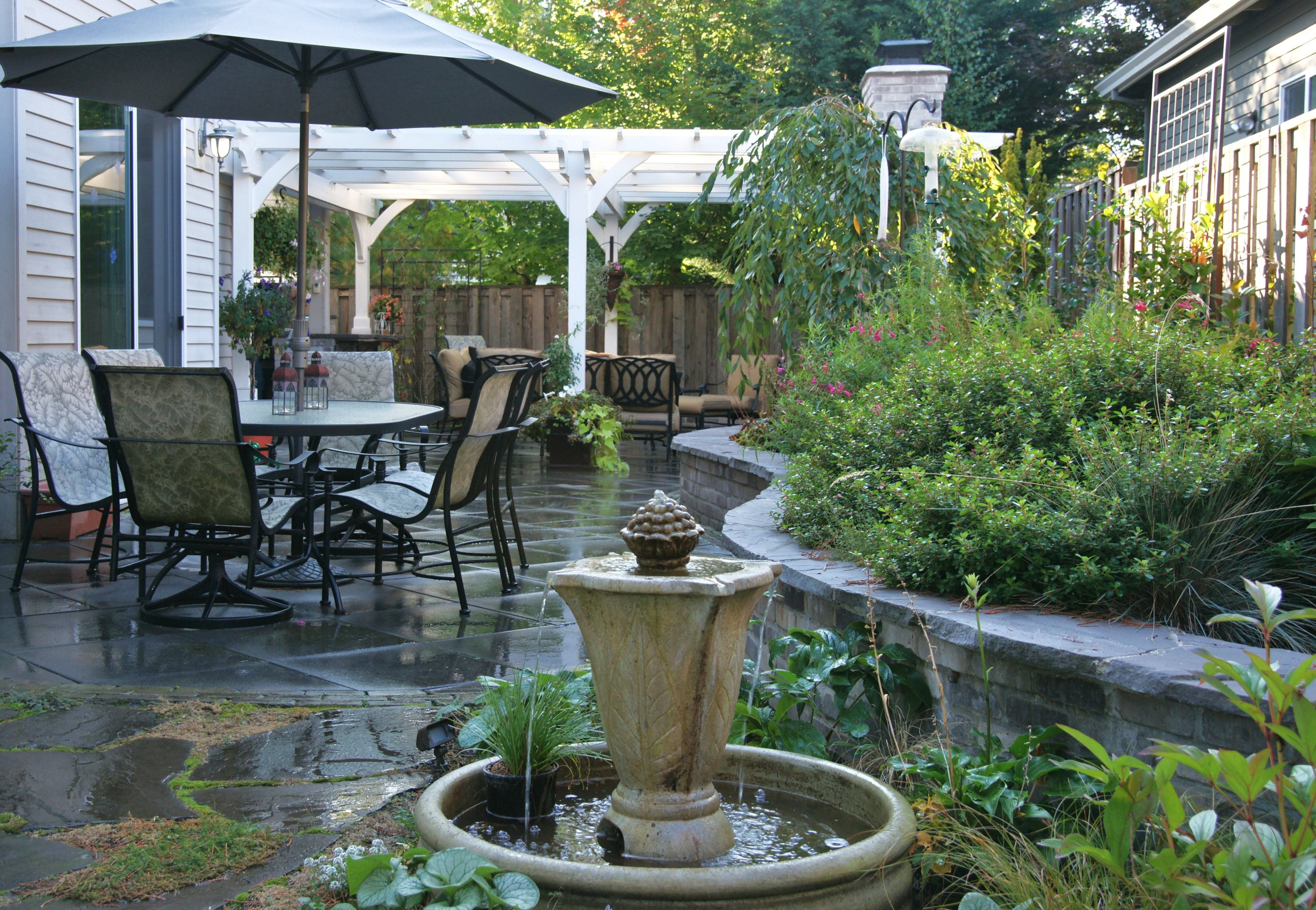 Plants for Your Patio | HGTV