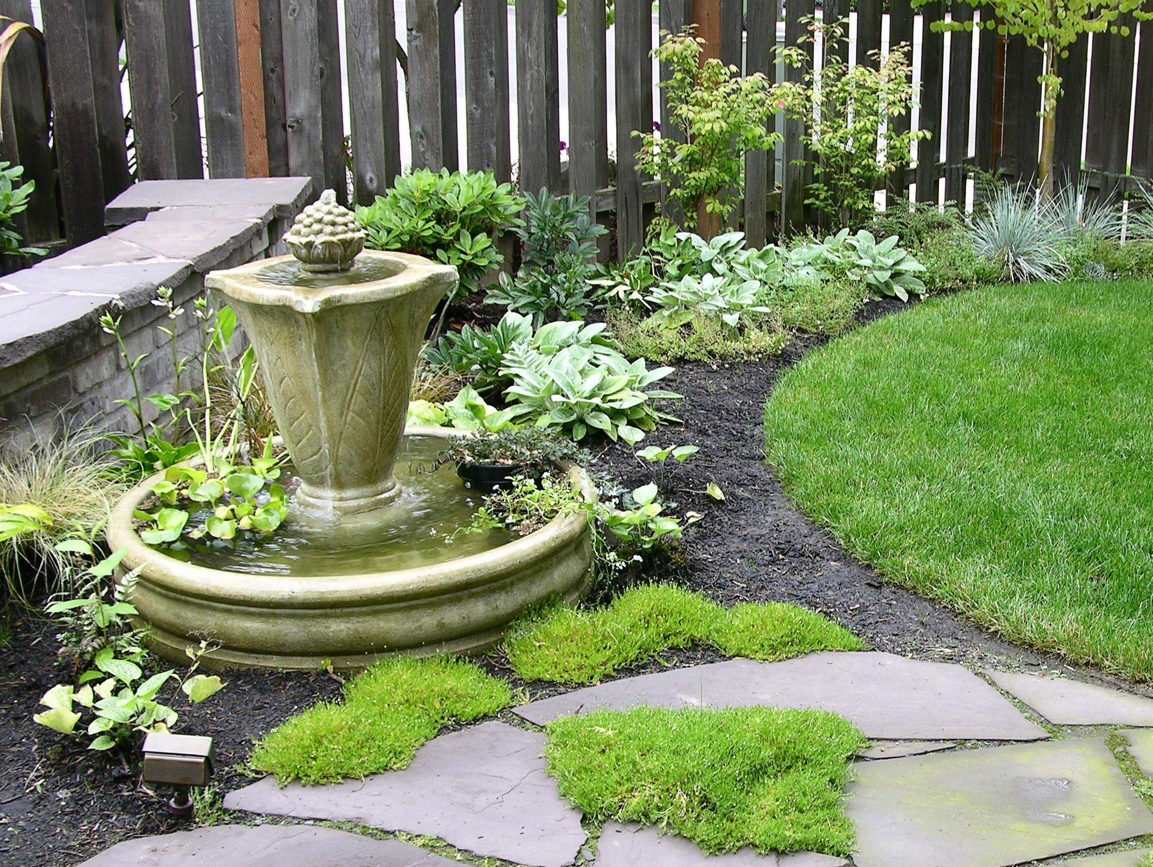 Week 6 Portland Patio Garden – Garden of the Week