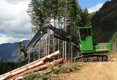 3754D Forestry Swing Machine piling logs on a hill with mountains in ...