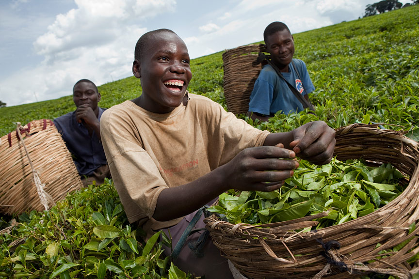 Fairtrade Fortnight hopes to boost sales after a £100m drop in 2015