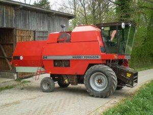 Combine harvester Massey Ferguson MF 24 - technikboerse.com